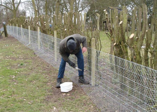 Rabbit Fencing Installation