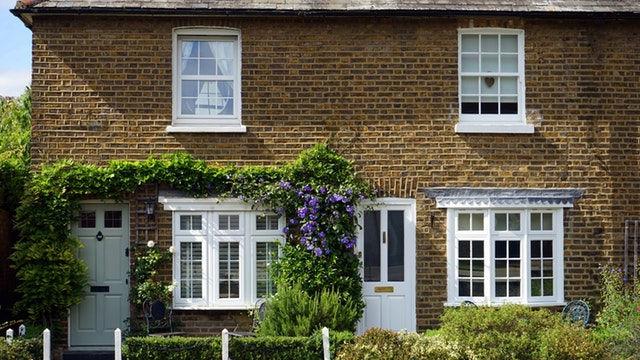 Residential / Domestic Pest Control in Braintree & Sudbury