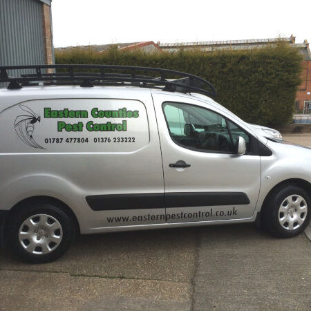 Mobile Pest Control Comapny in Braintree & Sudbury